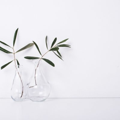 Two olive branches in glass bottles on table near the wall, white background with copy space